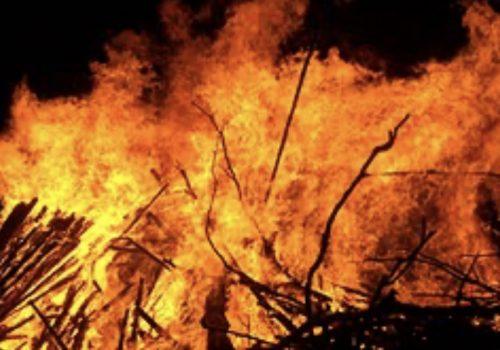 लगातार खडेरीका कारण बैतडीका पन्ध्र सामुदायिक वनमा आगलागी