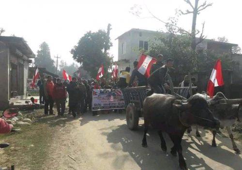कञ्चनपुरमा सरकारविरुद्ध बयलगाडामा गोरु र रागा नारेर प्रदर्शन