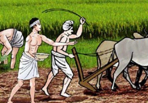 किसान सूचीकरण व्यवस्थापन अभियानको शुभारम्भ